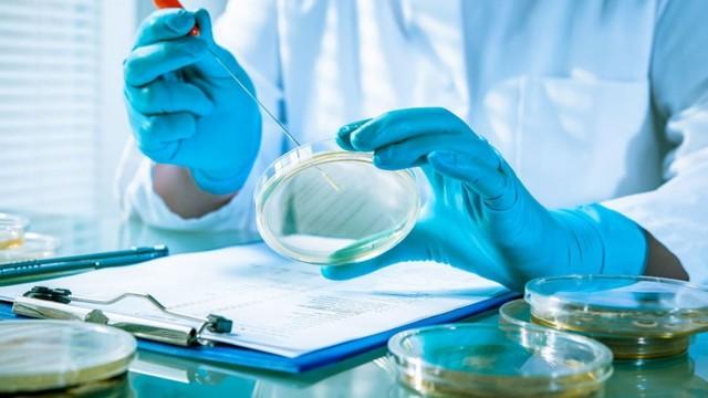 Листериоз при беременности: чем опасен, какие анализы сдавать, как лечить?