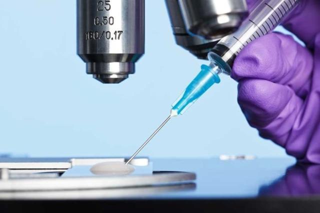 Биопсия яичка у мужчин: показания, методики проведения, осложнения и их профилактика