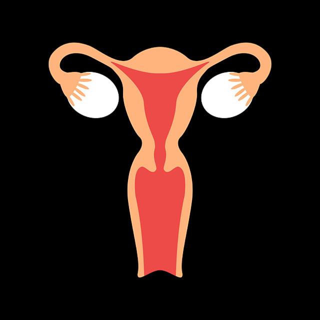 Непроходимость маточных труб: симптомы, причины, диагностика, лечение