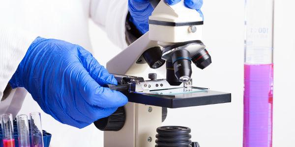 rw анализ крови: для чего и как проводится, есть ли более современные методы диагностики