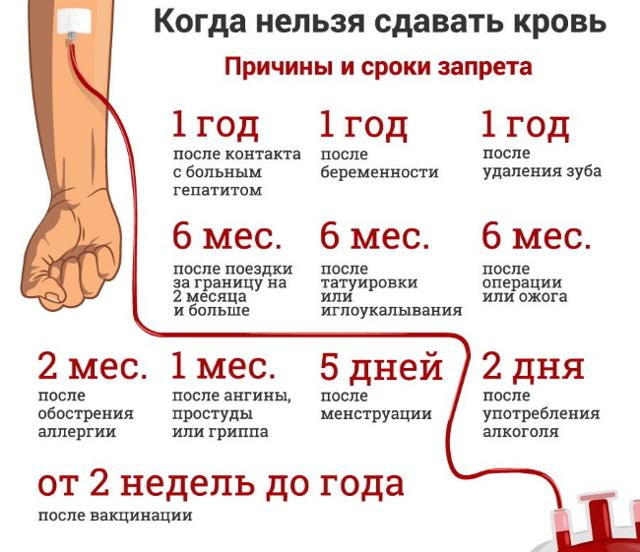 Можно ли сдавать кровь во время месячных (анализы, для донорства)