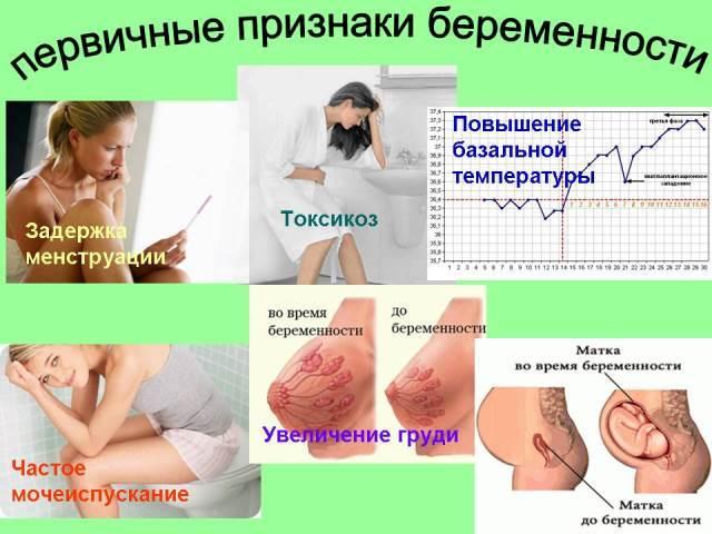 Можно ли забеременеть сразу после месячных на 1 день: когда происходит зачатие