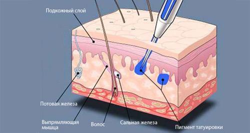 Можно ли делать татуаж бровей во время месячных: микроблейдинг, татуировку