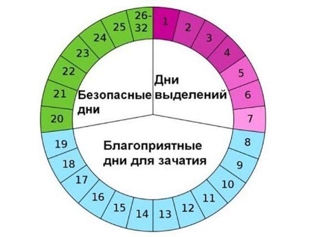 Фолликулярная фаза что это какой день цикла (норма гормонов)