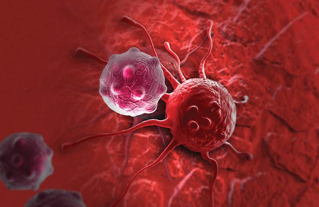 Причины задержки месячных после 40 лет: кроме беременности, задержка месячных тест отрицательный после 40-43 года